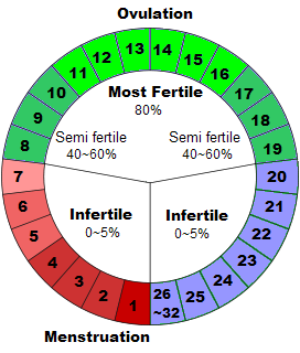 photo of the safe period chart: When is safe period
