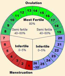 menstrual cycle chart fertile days: Fertility calculator